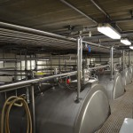 Cheese Vats - Top View